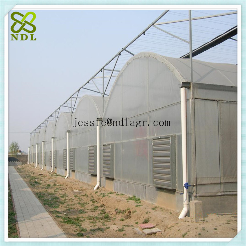 Agricultural PVC Film Greenhouse with Thermal Blanket