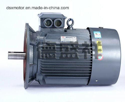 Iie2 30kw AC Three Phase Asynchronous Motor
