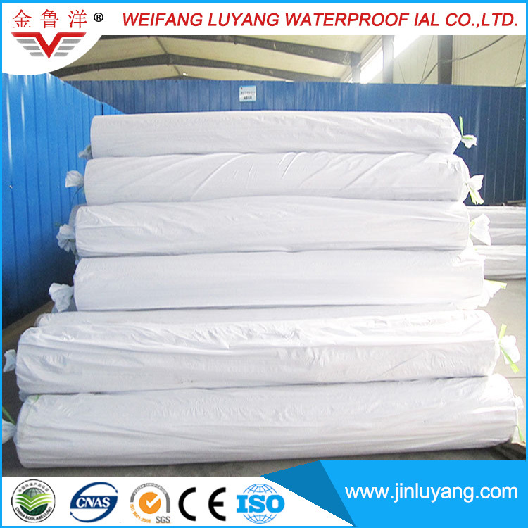 China Supply Thermoplastic Polyolefin (TPO) Waterproof Membrane From Professional Manufacturer