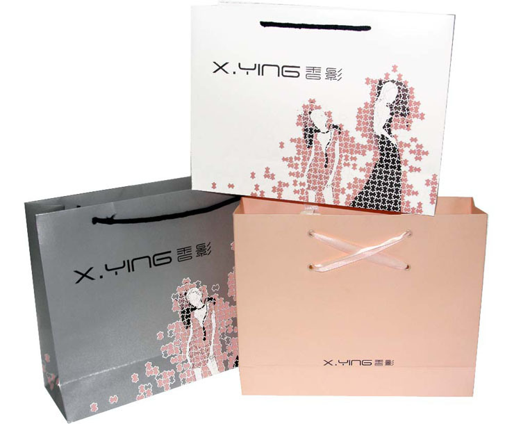 Hot Sale Luxury Paper Gift Bags for Jewelry Packing (FLP-8928)