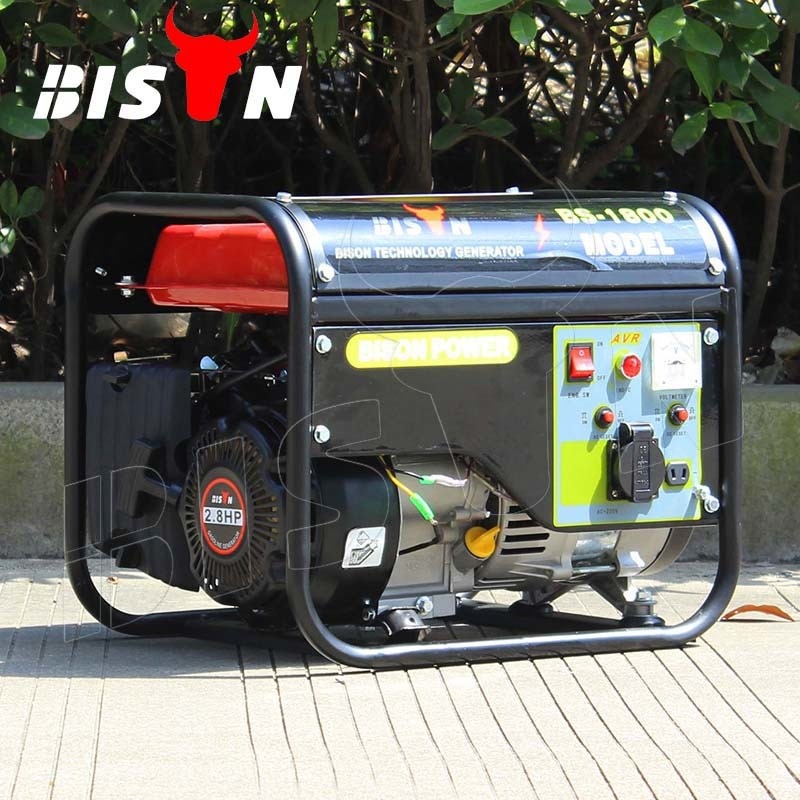 Bison (China) BS1800n 1kw High Quality Portable Gasoline Generator Set