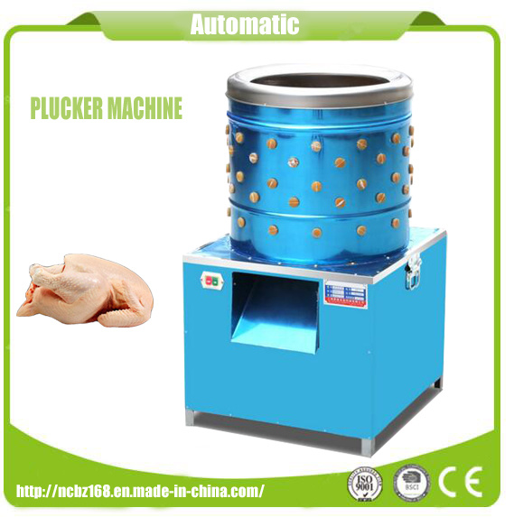 Ce Approved Electric Commercial Chicken Plucker Machine Stainless Steel Material