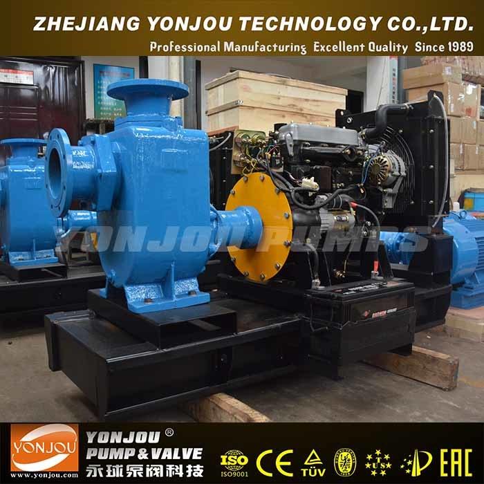 Zw Diesel Engine Horizontal Centrifugal Sewage Pump