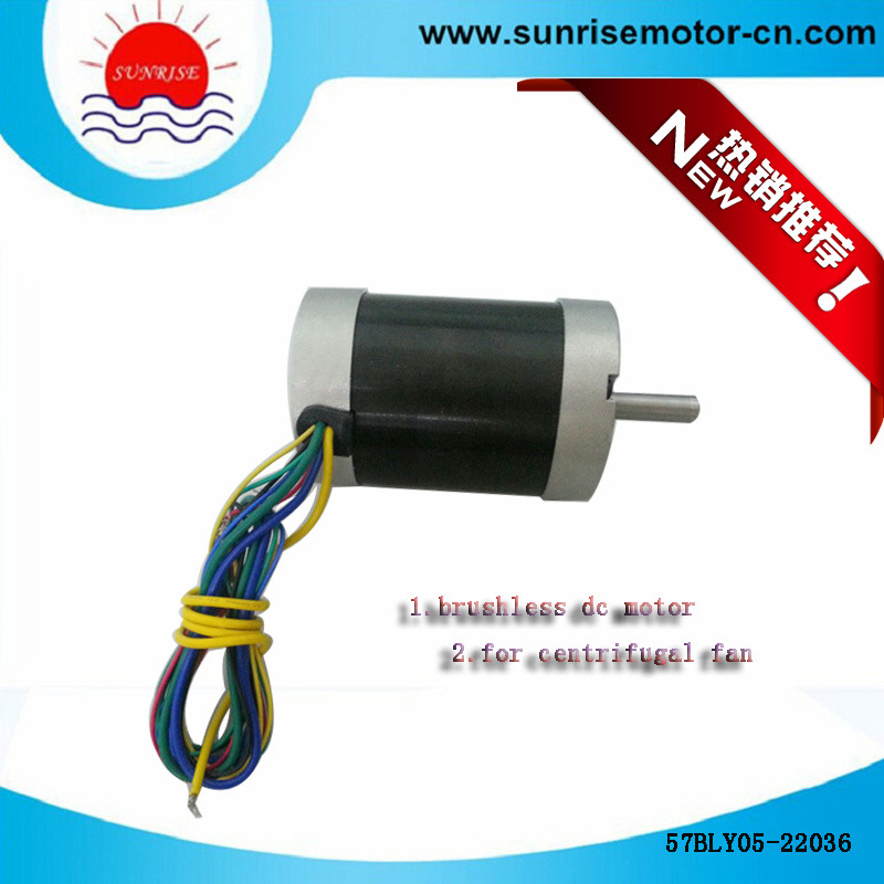 57bly05-22036 High Voltage Electric Motor/DC Motor BLDC Motor