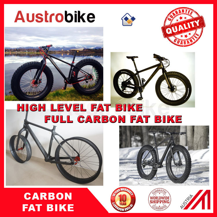 Complete Fat Bike Fatbike 26er Carbon Fat Bike with Hydraulic