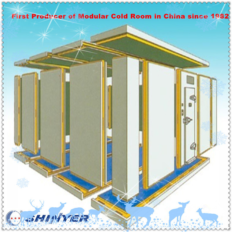 Modular Cold Storage Room for Vegetables and Fruits