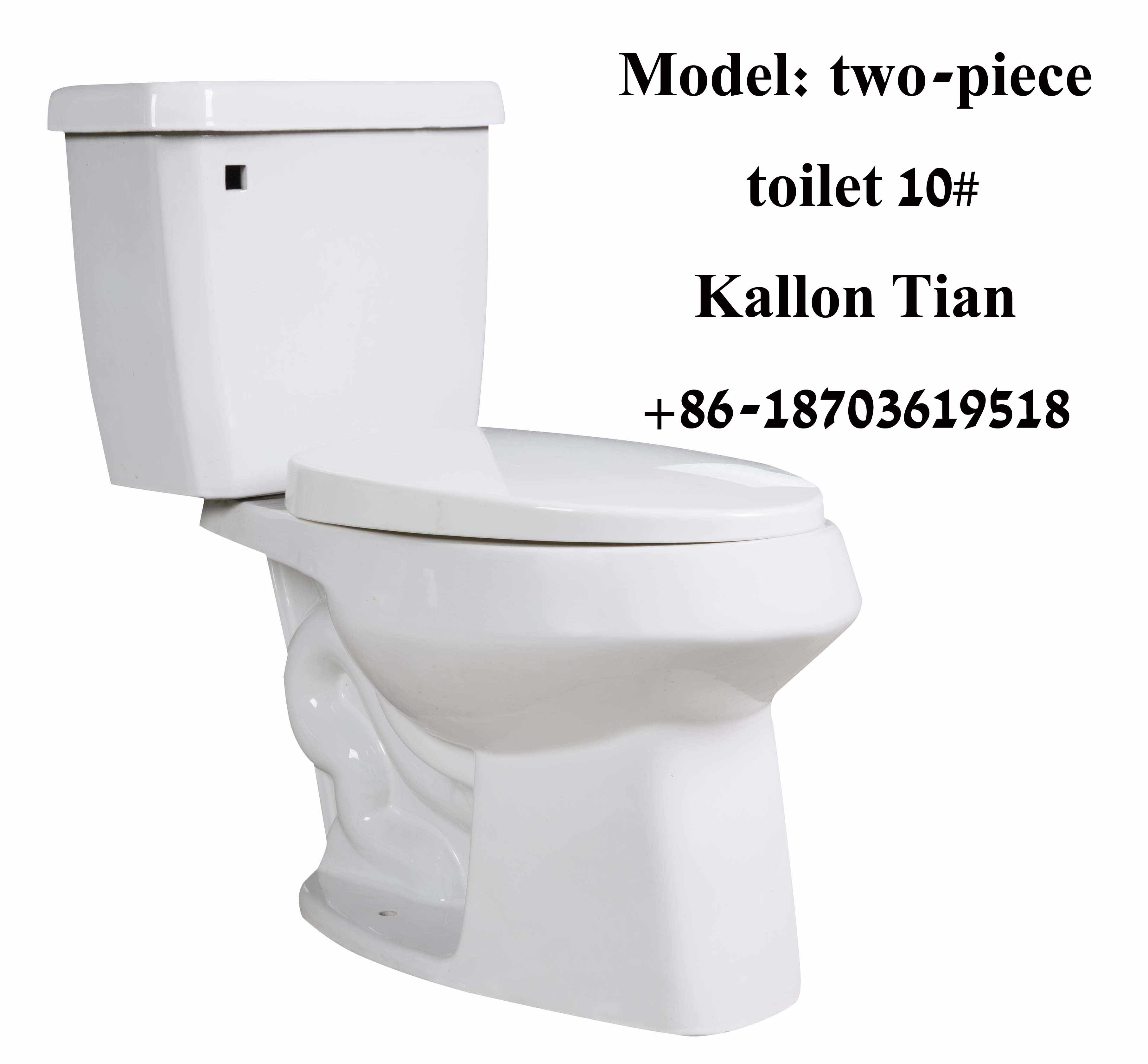 China 10# Separate/Two-Piece Siphon Bathroom Ceramic Toilet in ...