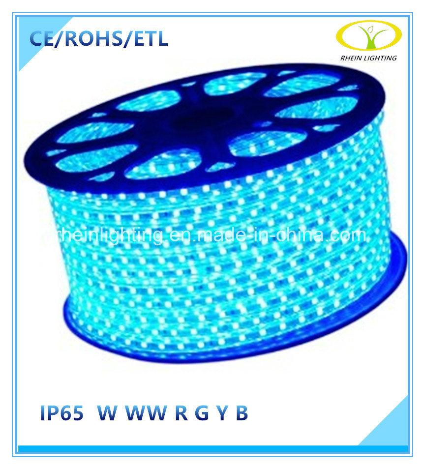 120V Outdoor IP65 Flexible LED Strip Light with ETL Certification