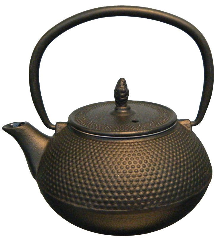 China cast iron teapot hbf castiron