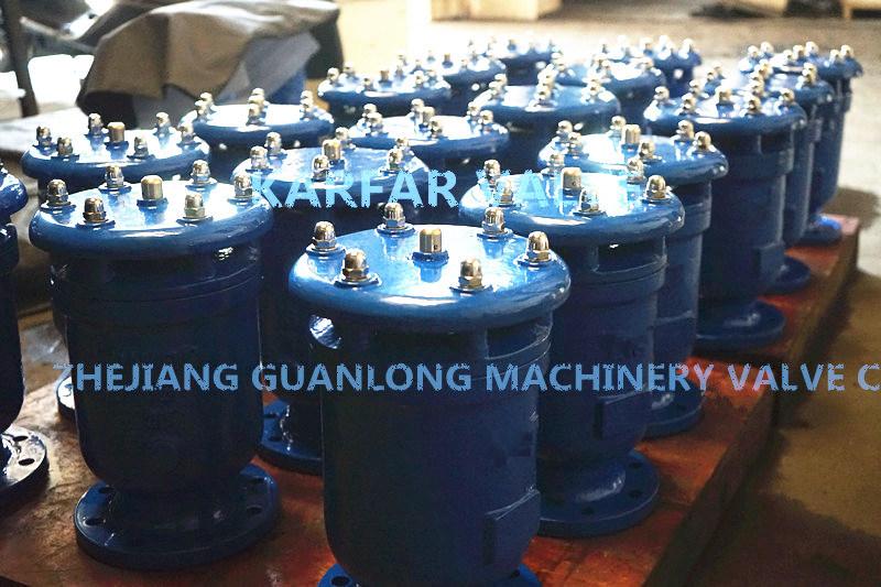 (FGP4X) Vacuum Breaker Suction Intergral Combined Gas Air Release Valve