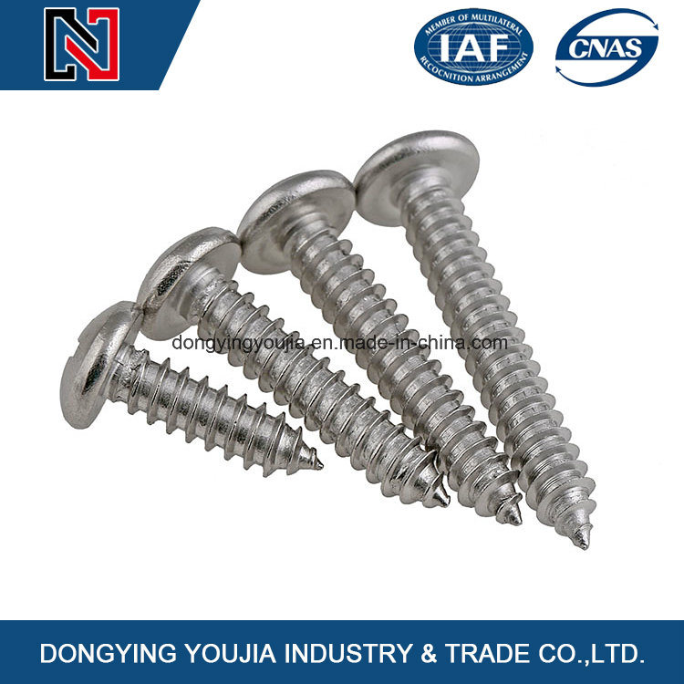 Cross Recessed Pan Head Tapping Screws
