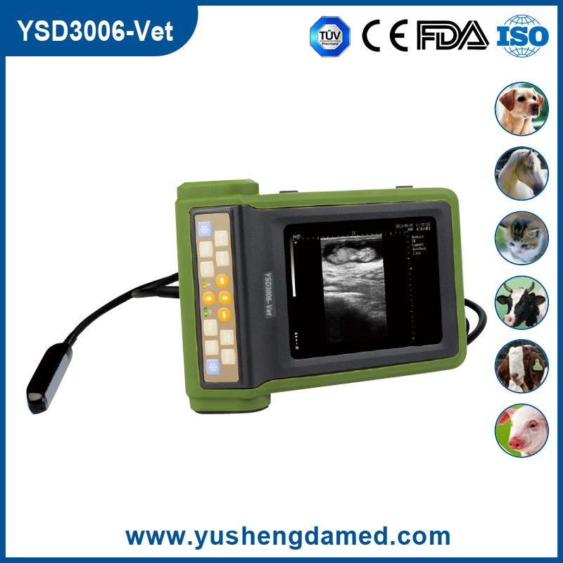 Ysd3006-Vet Hot Sale Handheld Veterinary Ultrasound