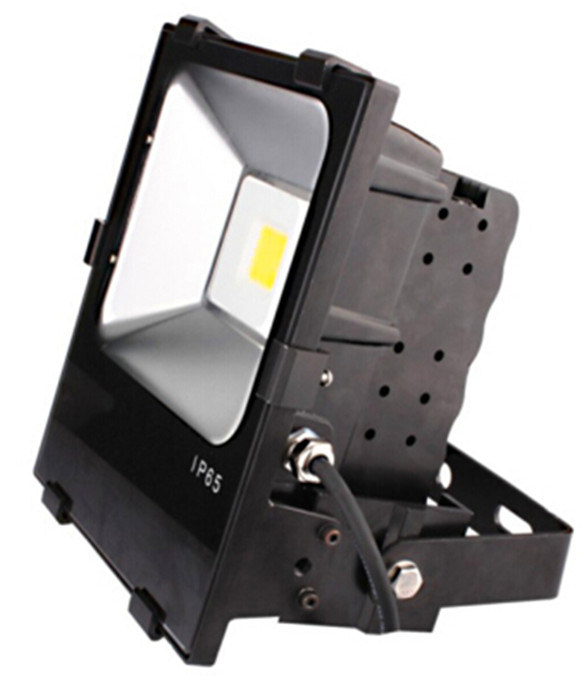 Waterproof IP65 Outdoor High Lumen Bridgelux COB 100W Flood Light