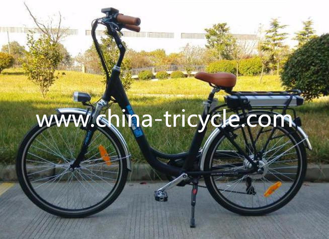 250W Motor Lithium Battery for Electric Bike (SP-EB-06)