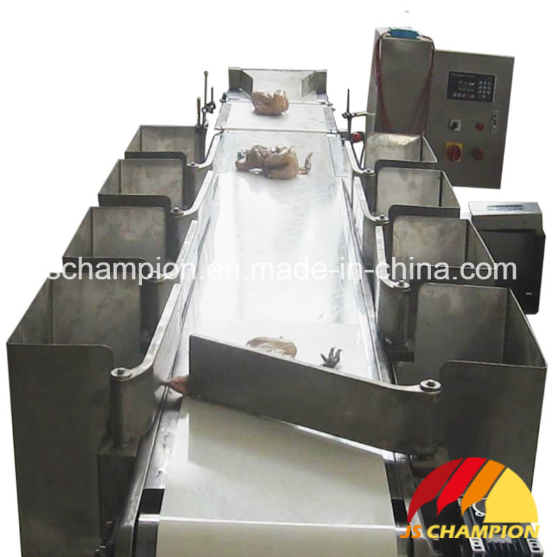 Automatic Weighing and Grading Machine for Poultry Slaughterhouse