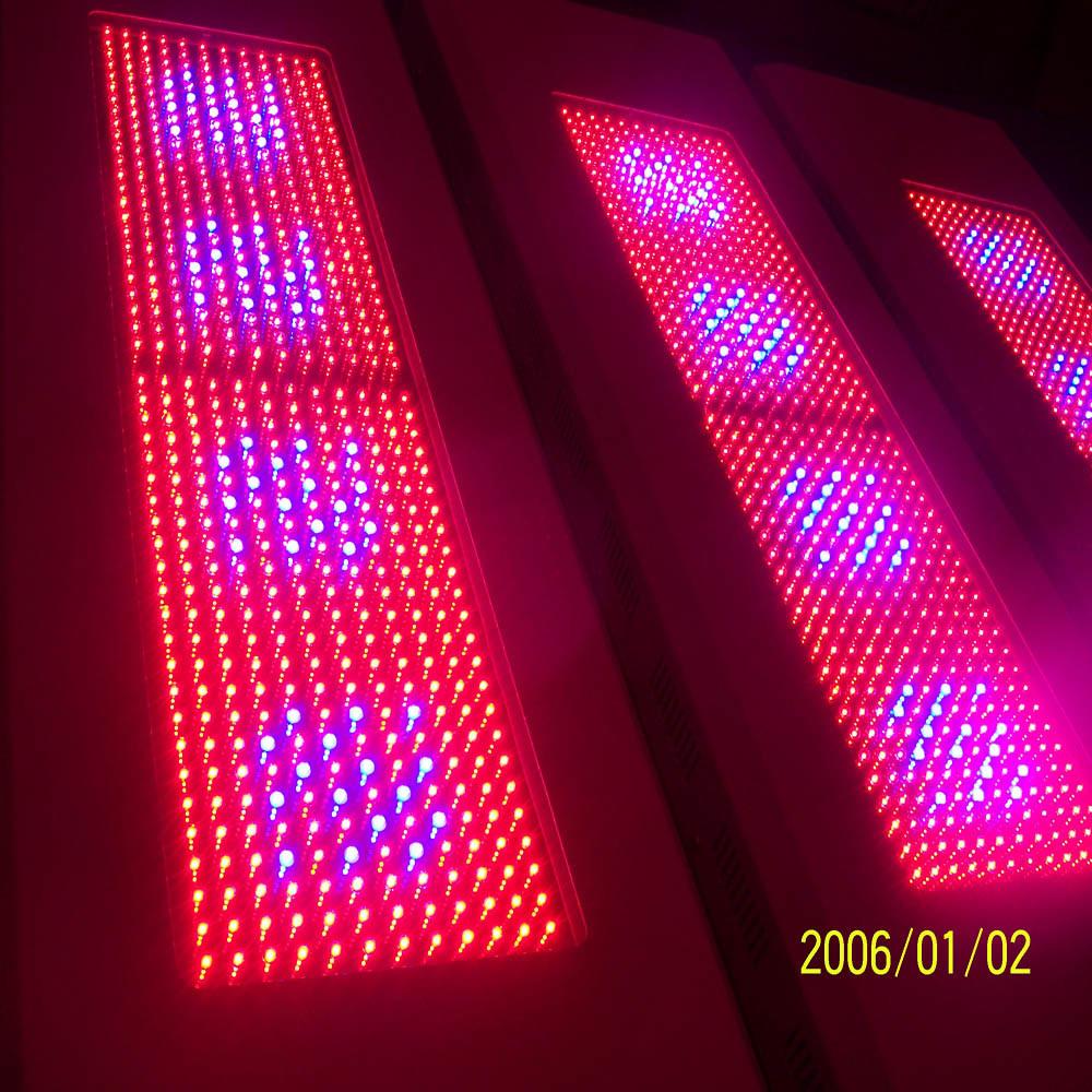 China 600w Led Grow Light Ff Pg576rby 600w 240v China