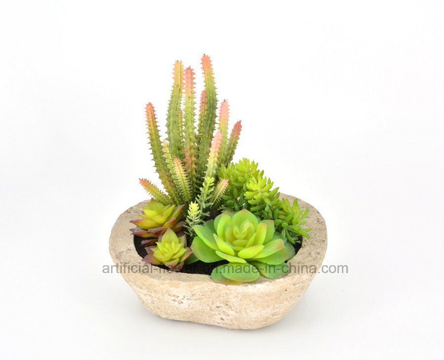Mixed Succulent Artificial Plant for Decoration of Any Public Places-Home/Office/Bar etc
