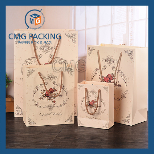 Carton Printed Matt Gift Paper Bag (CMG-MAY-057)