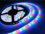 24V SMD 2835 Flexible LED Strip Light RGB