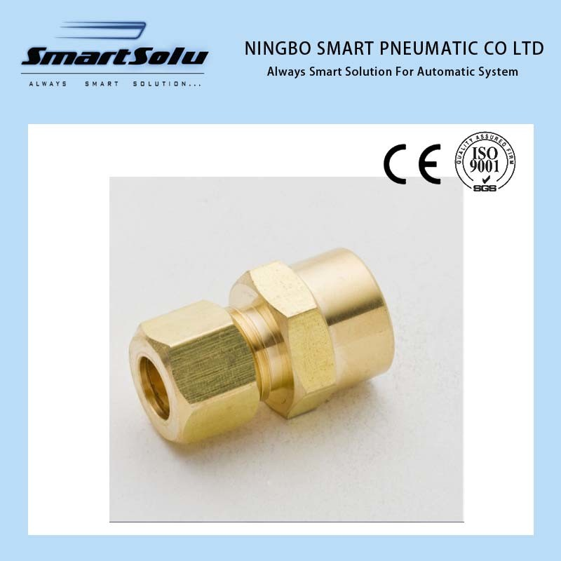 Ningbo Smart Female Connector Brass Fittings Compression Pipe Sleeve Fittings
