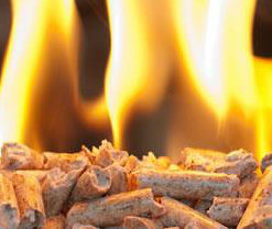Homemade Pellets Production Biomass Pellet Mill Wood Pellet Machine Price