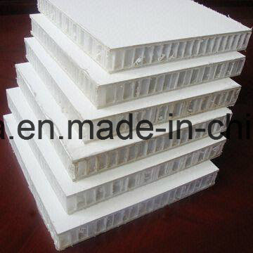 Gel Coated FRP PP Honeycomb Panels