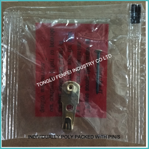20lb Classtic Brass Wall Hanger with Nail