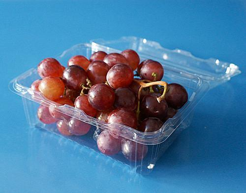 Fruit packaging container plastic packaging container for blueberry