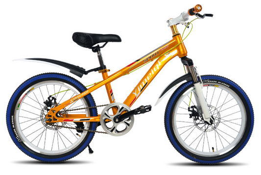 "20"" Mountain Bike MTB Bicycle Mountain Bicycle for Students"