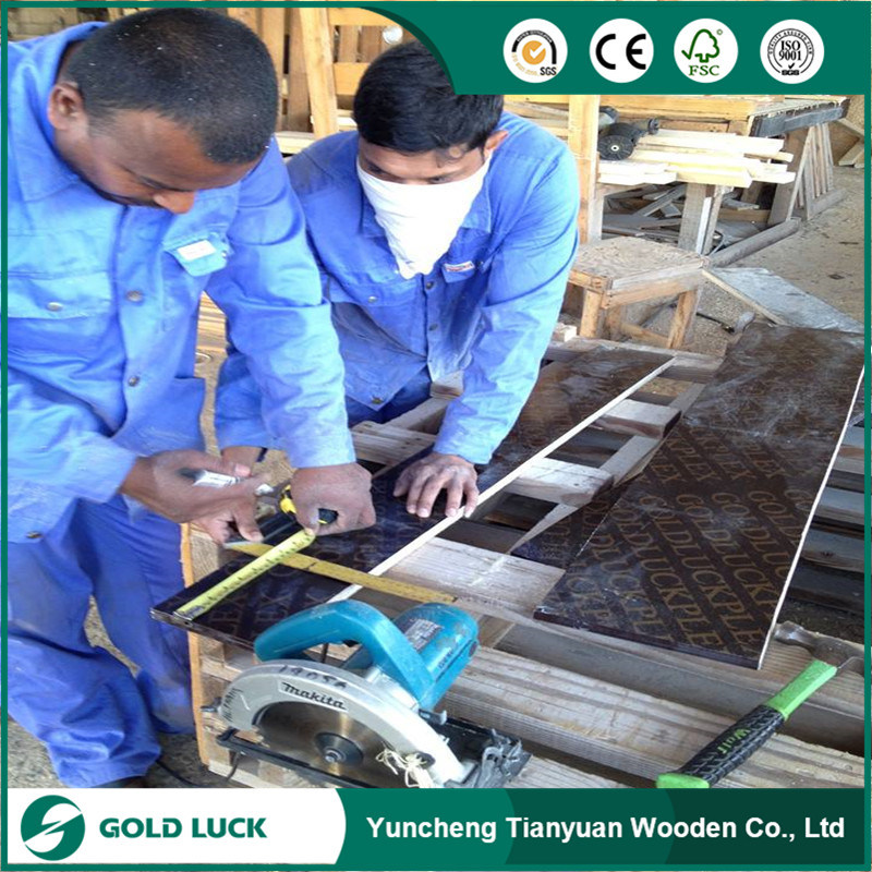 Phenolic 18mm Film Faced Plywood/ Shuttering Plywood/ Concrete Plywood