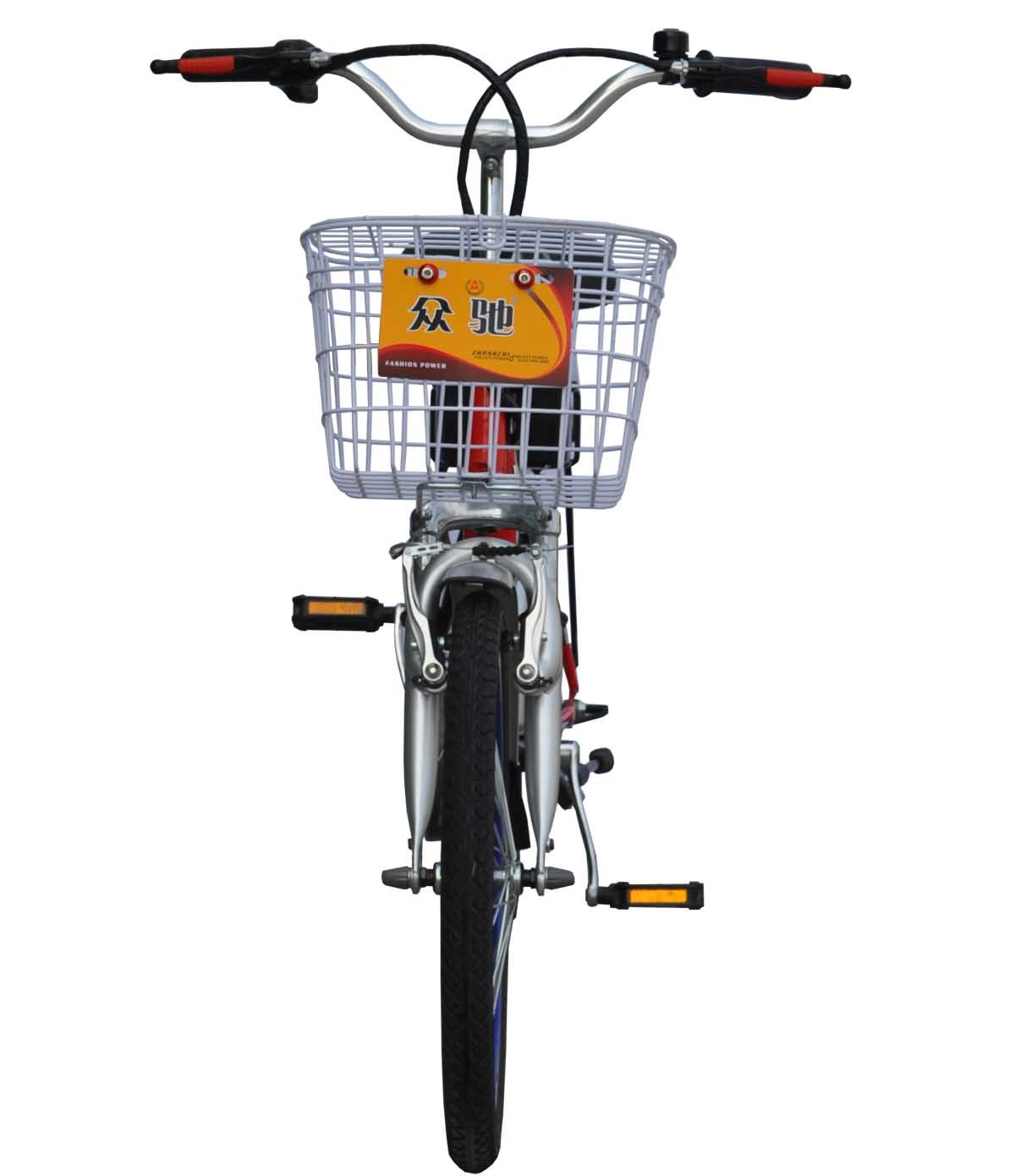 Electric Bike (TDN-02Z)