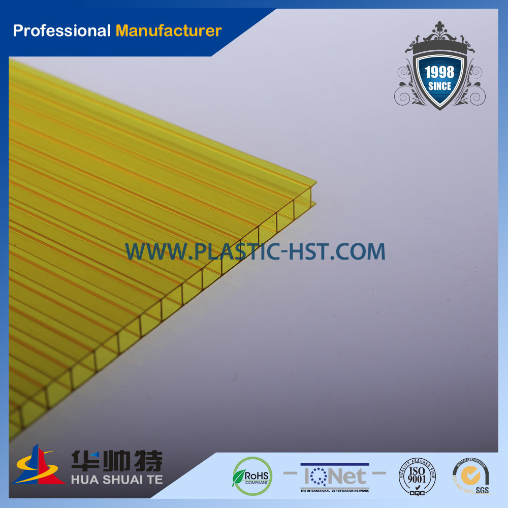 Plastic Best Quality Twin-Wall PC Sheet