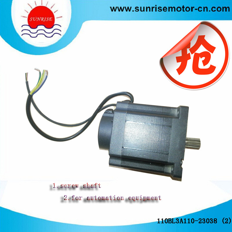 110bl3a110-23038 Gear-Hobbing BLDC Motor/Electric Motor
