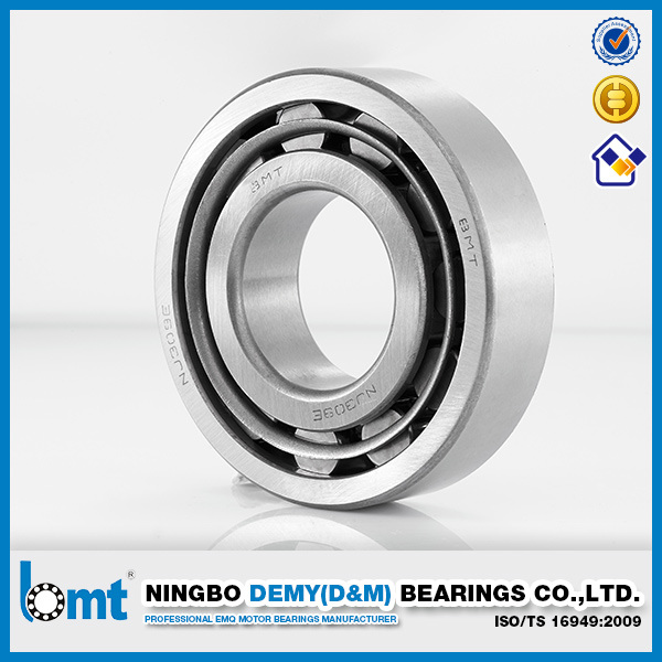 Cylindrical Roller Bearings Nu305e
