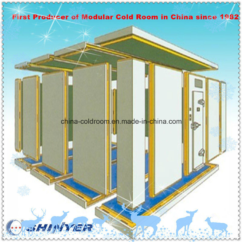 Cold Storage Room for Food Production