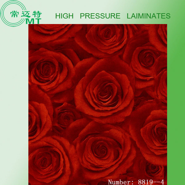 Formica Color Plastic Laminated Sheet