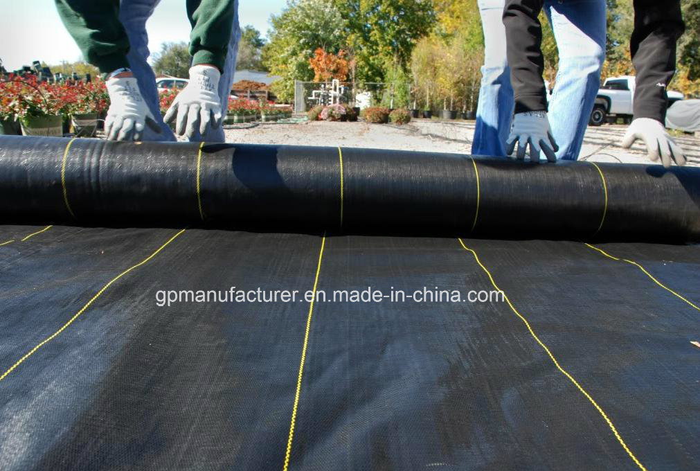 Black Plastic Ground Cover/PP Woven Landscape Fabric