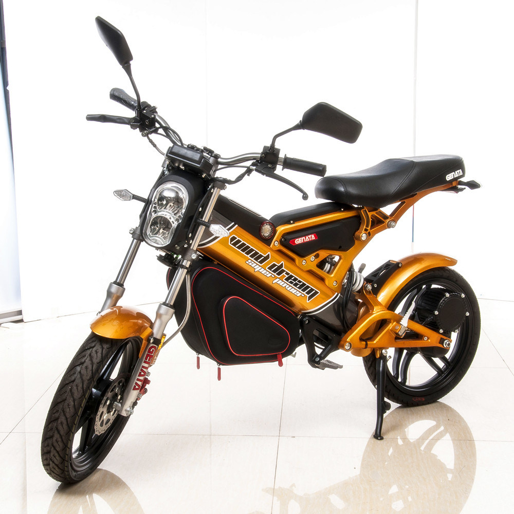 EEC Folding Electric Bike (GM890E)