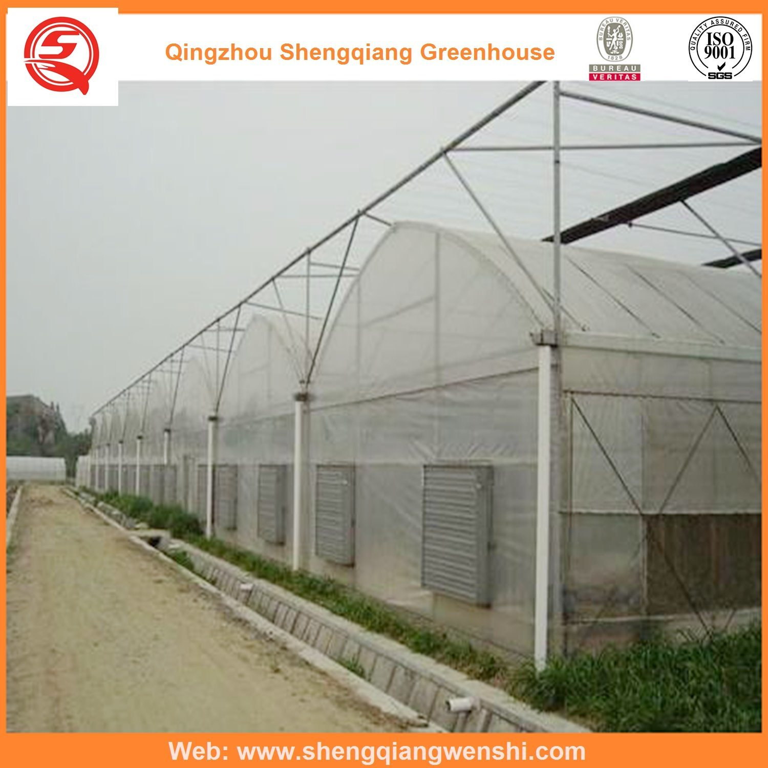 Vegetables/Garden/Flowers/Farm Multi Span Film Green House