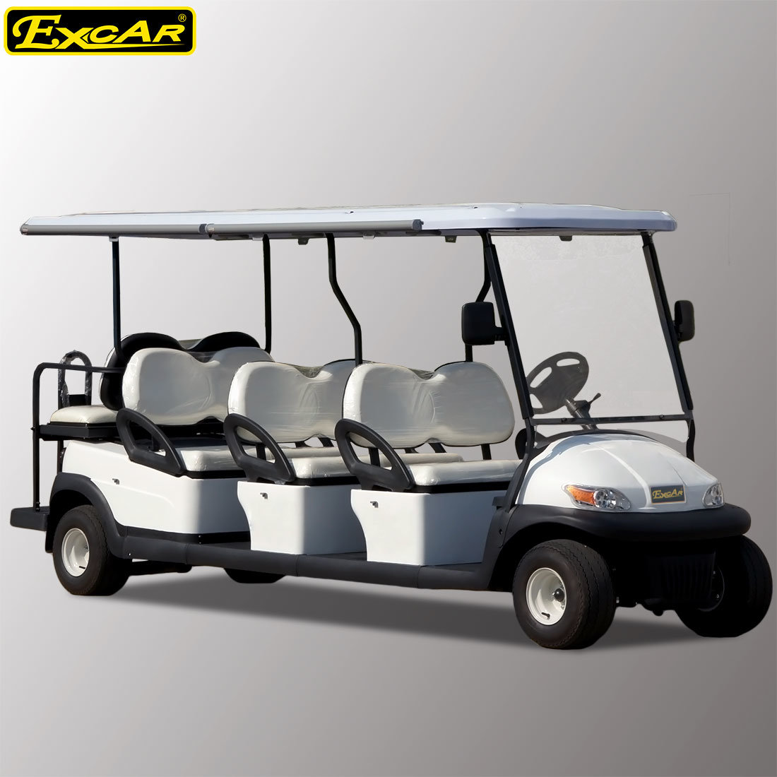 8 Passengers Electric Sightseeing Car for Airport
