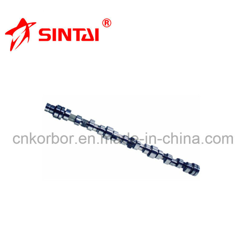 High Quality Camshaft for Benz Om366A 3660500401/3660500601