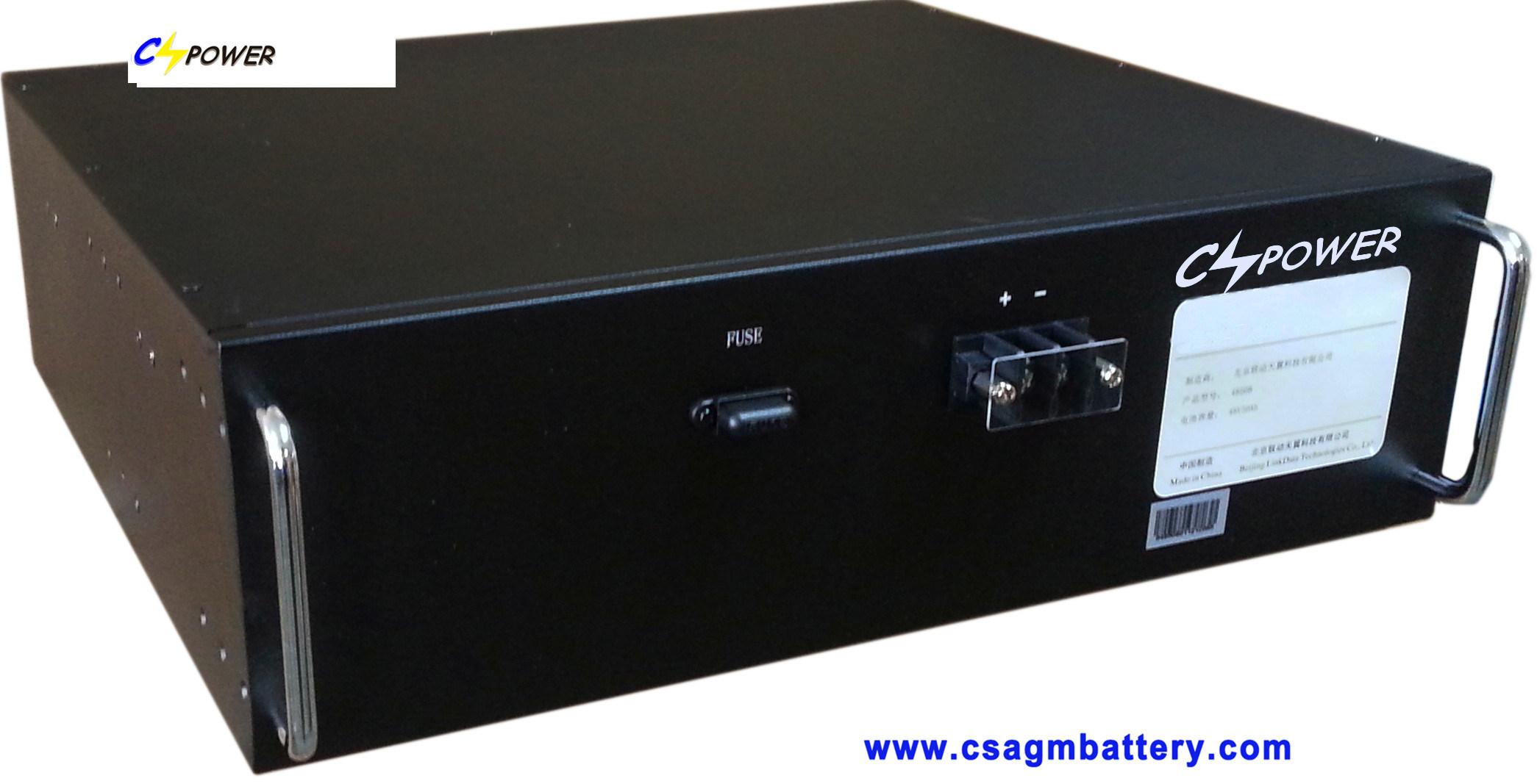 Lithium Iron Phosphate Battery (LiFePO4) 19inch 12V 24V 48V