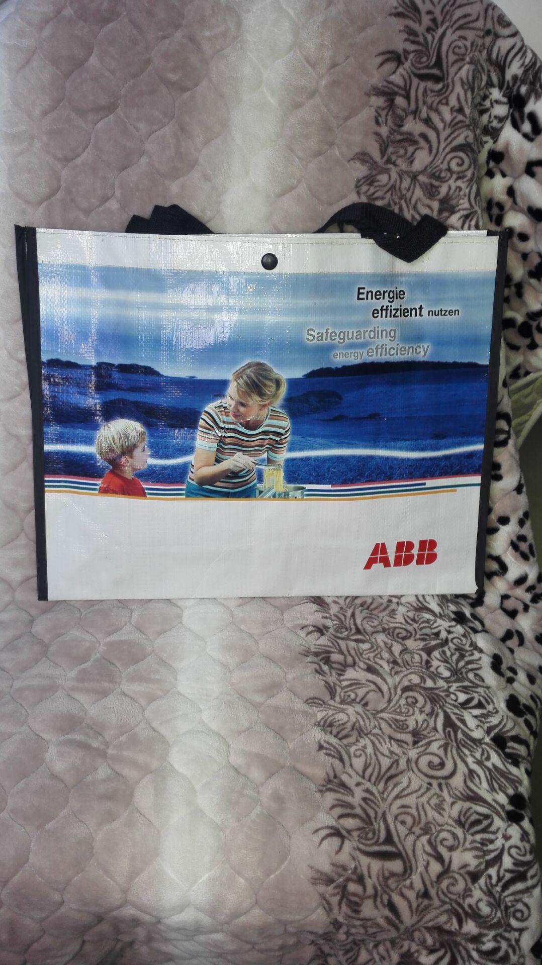 PP Woven Travel Promotional Shopping Hand Bag (HR-PB016)
