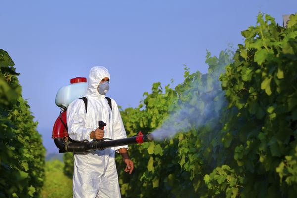 GMP Factory High Quality Plant Extract Matrine for Pesticide