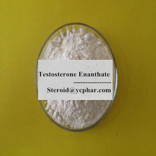 99.9% Anabolic Steroid Test E Powder Testosterone Enanthate for Sale