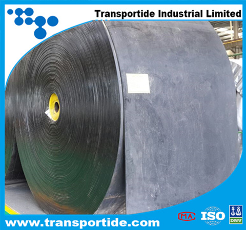Polyester Conveyor Belt with Heat Resistant
