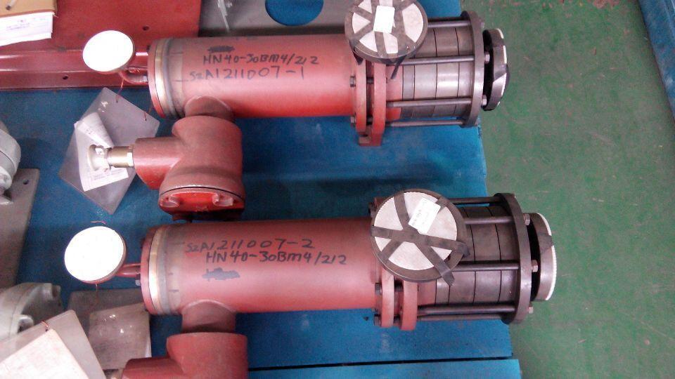 Hn Series Canned Motor Pump