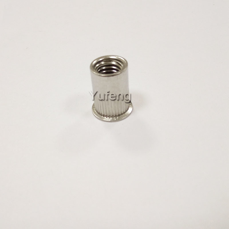 Stainless Steel British & American System Rivet Nut with Small Head