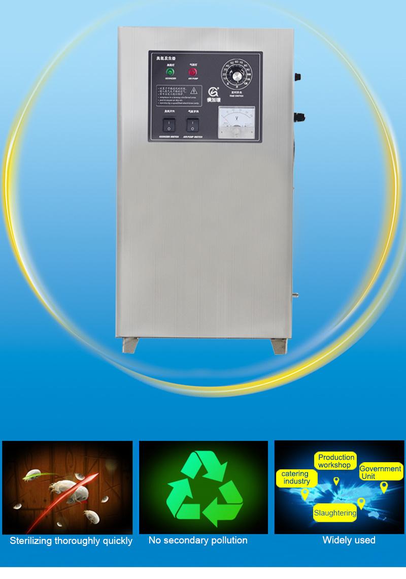 10g Portable Ozone Generator Air Freshener Ozonator for Sale
