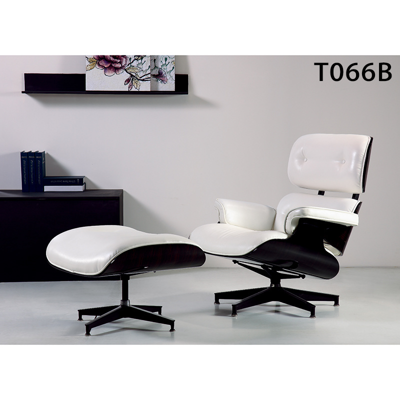 Living Room Comfortable Furniture Leisure Eames Arm Chair (T066)
